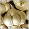 garlic_clove
